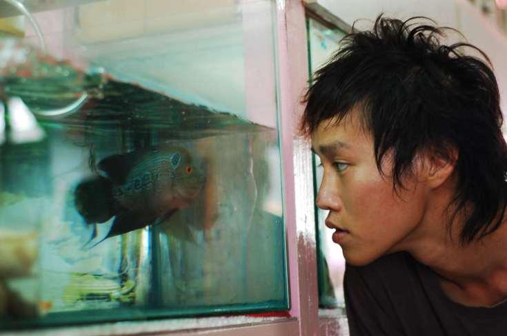 Elephant & the Sea 4